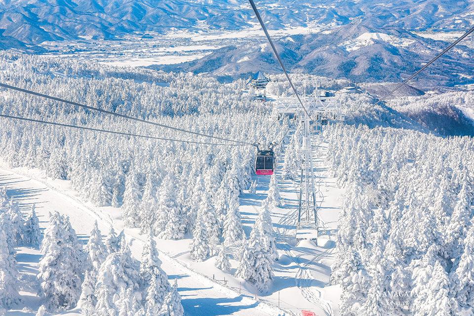 山形必訪藏王樹冰-震撼雪怪與夢幻白色世界美景 交通美食完整介紹