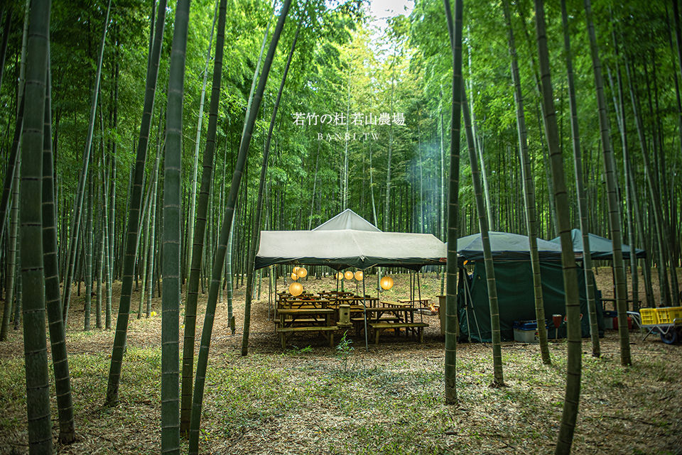 東京秘境-若竹之杜 若山農場:竹林茶屋野餐、穿和服散步、烤栗子、竹林高盪鞦韆